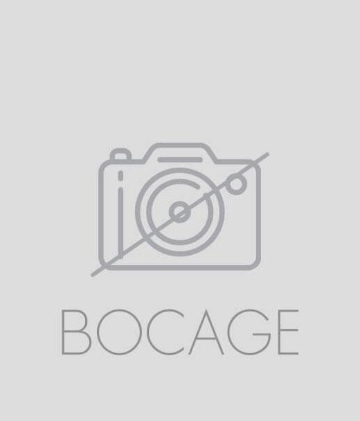 Sneakers Kesi